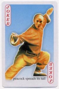 Китайское Кунг-фу